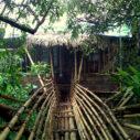 Bamboo balconies